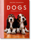 Walter Chandoha. Dogs. Photographs 1941-1991 Cover Image