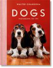 Walter Chandoha. Dogs. Photographs 1941-1991 Cover Image