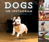 Dogs on Instagram 2018 Daily Calendar Cover Image