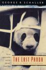 The Last Panda Cover Image