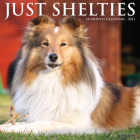 Just Shelties 2021 Wall Calendar (Dog Breed Calendar) Cover Image