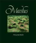 Marshes: The Disappearing Edens Cover Image