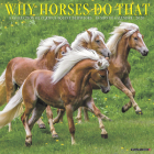 Why Horses Do That 2020 Wall Calendar Cover Image