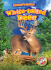 White-Tailed Deer (Animals of the Forest) Cover Image