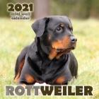 Rottweiler 2021 Mini Wall Calendar Cover Image