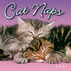 2021 Cat Naps Mini Calendar Cover Image
