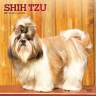 Shih Tzu 2021 Square Foil Cover Image