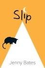 Slip Cover Image