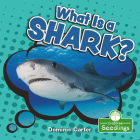 What Is a Shark? Cover Image