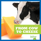 From Cow to Cheese (Where Does It Come From?) Cover Image