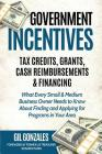 Government Incentives: Tax Credits, Grants, Cash Reimbursements & Financing: The Insider's Guide to Government Funding for Your Small Busines Cover Image