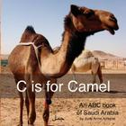 C is for Camel: An ABC book of Saudi Arabia Cover Image