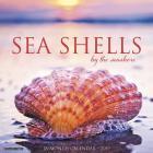 Sea Shells 2019 Wall Calendar Cover Image