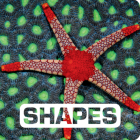 Shapes (Picture This) Cover Image