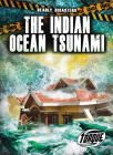 The Indian Ocean Tsunami (Deadly Disasters) Cover Image