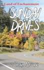 Sunday Drives: Rio Grande Valley Cover Image