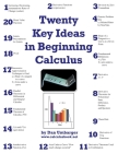 Twenty Key Ideas in Beginning Calculus Cover Image