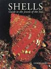 Shells: Guide to the Jewels of the Sea Cover Image