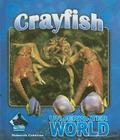Crayfish Cover Image