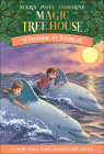 Dolphins at Daybreak (Magic Tree House #9) Cover Image
