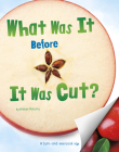What Was It Before It Was Cut? Cover Image