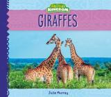 Giraffes (Animal Kingdom) Cover Image