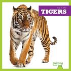 Tigers (Big Cats) Cover Image