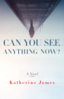 Can You See Anything Now?: A Novel (Paraclete Fiction) Cover Image