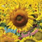 Seed to Sunflower (LifeCycles) Cover Image