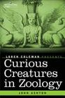 Curious Creatures in Zoology Cover Image
