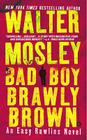 Bad Boy Brawly Brown Cover Image