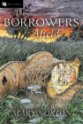 The Borrowers Afield Cover Image