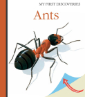 Ants (My First Discoveries) Cover Image