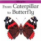 From Caterpillar to Butterfly (Lifecycles) Cover Image