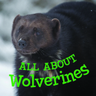 All about Wolverines: English Edition Cover Image
