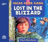Lost in the Blizzard (Sugar Creek Gang #17) Cover Image
