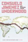 Consuelo Jimenez Underwood: Art, Weaving, Vision Cover Image