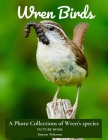 Wren Birds A Photo Collections of Wren's Species Picture Book: Gift book for Bird watchers, Bird lovers, Senior Adults with Dementia Alzheimer Patient Cover Image