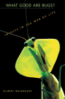 What Good Are Bugs?: Insects in the Web of Life Cover Image