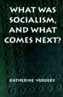 What Was Socialism, and What Comes Next? Cover Image