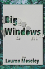 Big Windows (Carnegie Mellon Poetry) Cover Image