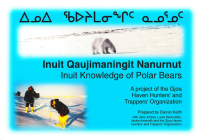 Inuit Knowledge of Polar Bears [Inuit Qaujimaningit Nanurnut]: A Project of the Gjoa Haven Hunters' and Trappers' Organization Cover Image