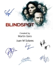 Blindspot: Screenplay Cover Image