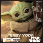 Baby Yoda 2021 Calendar: The Official Child Wall Calendar 2021 Star Wars The Mandalorian Television series Cover Image