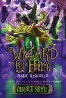 Magic Required, Volume 3 (Wizard for Hire #3) Cover Image