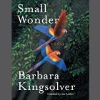 Small Wonder: Essays Cover Image