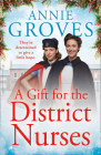 A Gift for the District Nurses (the District Nurses, Book 4) Cover Image