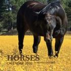 Horses Calendar 2020: 16 Month Calendar Cover Image