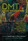 DMT Entity Encounters: Dialogues on the Spirit Molecule with Ralph Metzner, Chris Bache, Jeffrey Kripal, Whitley Strieber, Angela Voss, and Others Cover Image