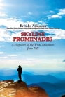Skyline Promenades: A Potpourri of the White Mountains from 1925 Cover Image